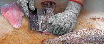 Rękawice do żywności